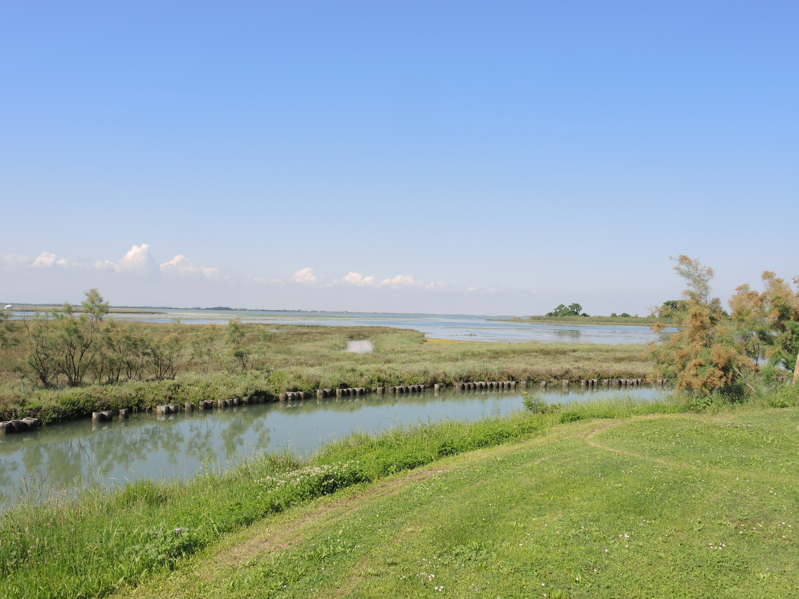 View of the lagoon from the Andrich house