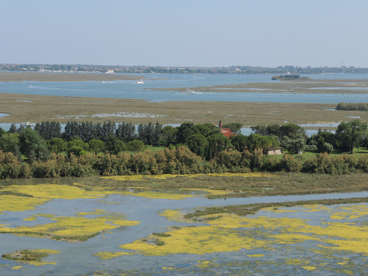 Another great view of the lagoon around Torcello