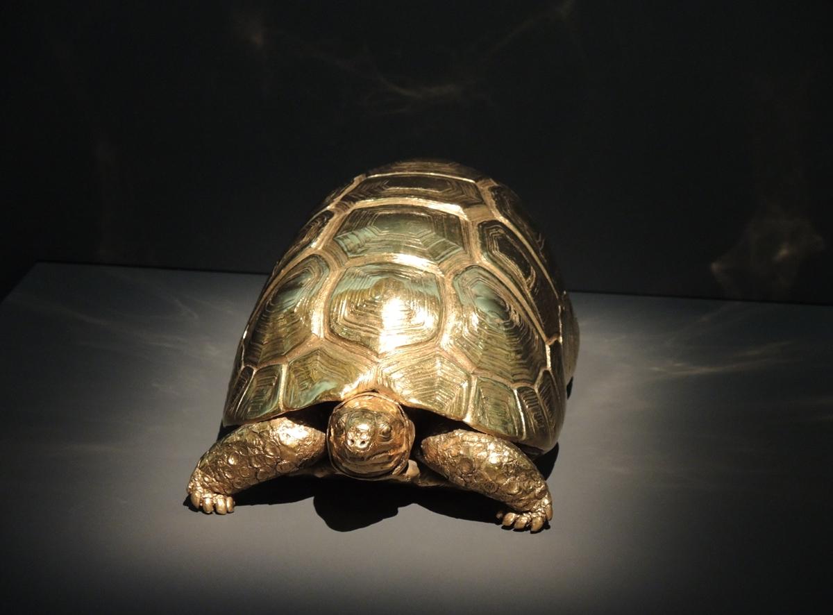 D. Hirst_Golden Tortoise